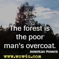 The forest is the poor man's overcoat. American Proverb