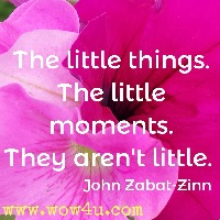 The little things. The little moments. They aren't little.  John Zabat-Zinn