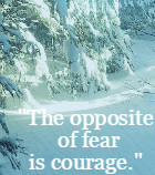 The opposite of fear is courage