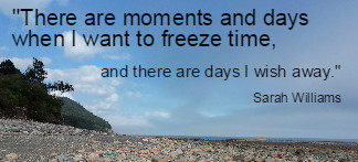 There are moments and days when I want to freeze time,  and there are days I wish away. Sarah Williams