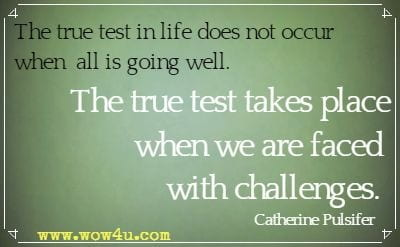 The true test in life does not occur when all is going well. The true test takes place when we are faced with challenges. Catherine Pulsifer