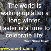 Celebrate Life Quotes Awesome Easter Quotes  Inspirational Words Of Wisdom