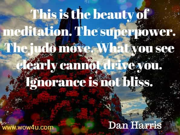 This is the beauty of meditation. The superpower. The judo move. What you see clearly cannot drive you. Ignorance is not bliss. Dan Harris, Meditation For Fidgety Skeptics.