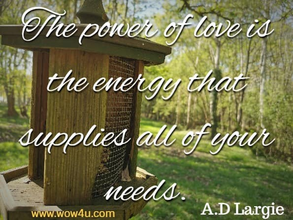 The power of love is the energy that supplies all of your needs. A.D Largie, World Wide Love