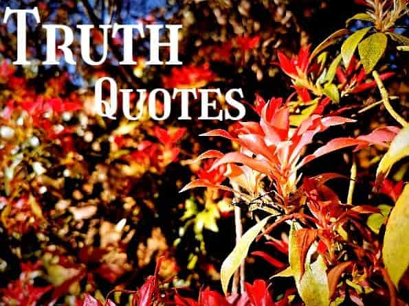 Truth,quotes,flower
