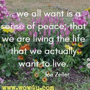 ... we all want is a sense of peace; that we are living the life that we actually want to live.  Joe Zeller