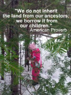 We do not inherit the earth from our ancestors; we borrow it from our children. American Proverb