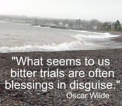 What seems to us bitter trials are often blessings in disguise. Oscar Wilde