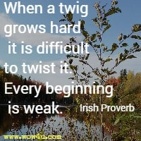When a twig grows hard it is difficult to twist it. Every beginning is weak.  Irish Proverb