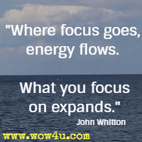 Where focus goes, energy flows. What you focus on expands. John Whitton