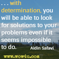 . . . with determination, you will be able to look for solutions to your problems even if it seems impossible to do. Aidin Safavi
