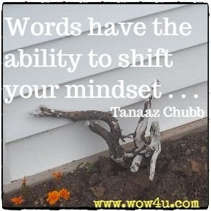 Words have the ability to shift your mindset . . .  Tanaaz Chubb