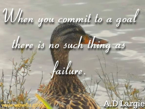 When you commit to a goal there is no such thing as failure. A.D Largie, Mind Body Energy