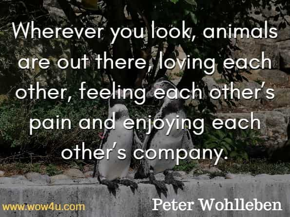 Wherever you look, animals are out there, loving each other, feeling each other's pain and enjoying each other's company. Peter Wohlleben, The Inner Life Of Animals.