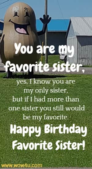 You are my favorite sister, yes, I know you are my only sister, but if I had more than one sister you still would be my favorite. Happy Birthday Favorite Sister!