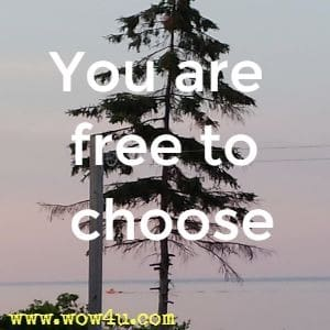 You are free to choose.