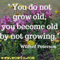 You do not grow old, you become old by not growing. Wilferd Peterson